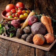 農家さん直送の新鮮野菜たち