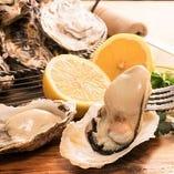 【期間限定】生牡蠣含む牡蠣料理食べ放題が新登場!【90分 2,480円(税込)~】