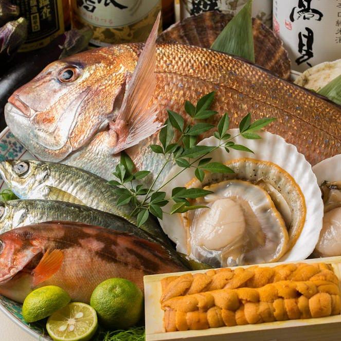 産地直送食材や築地直送鮮魚