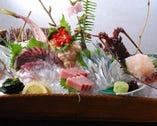 【瀬戸内の鮮魚のお造り】 水軍ならではの豪快で美しい活造り!