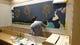 一見の価値あり!長岡の花火を描いた店内の壁画は直筆です!!