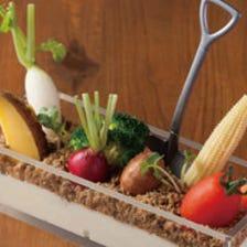 旬のお野菜を、多彩なお料理で。