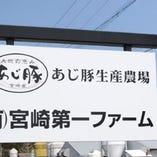 宮崎県産 あじ豚【宮崎県】