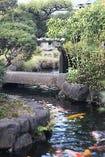 緑と水の大庭園。四季の移り変わりをお楽しみいただけます。