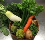 採れたて近江野菜。【滋賀県】