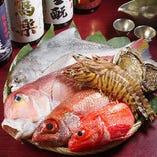 自慢の新鮮魚介や京野菜は、毎朝豊洲から直接仕入れています