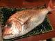 瀬戸内海産 桜鯛(さくらだい)
