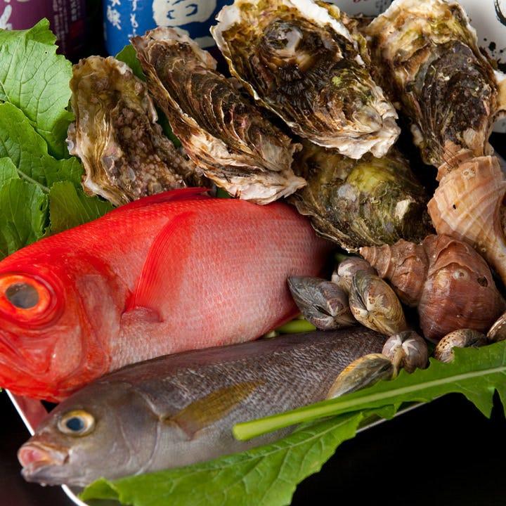 活きたまま仕入れる旬の鮮魚たち