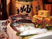 朝獲れ!小田原漁港直送鮮魚。