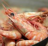 瀬戸内海では1年中とれ味もあまり変わりません。 大きめのものは塩ゆでに♪
