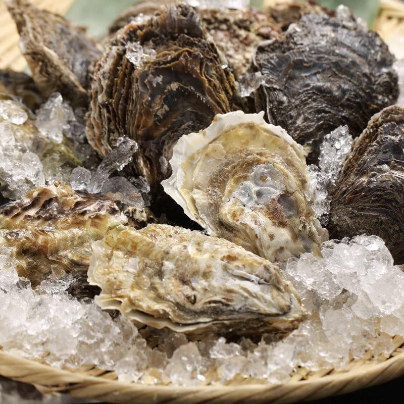 真牡蠣と岩牡蠣の違い
