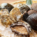 春の貝フェア。 春は貝の季節です。