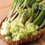 春野菜、こごみ、たらの芽、うど、うるい、菜の花、などなど