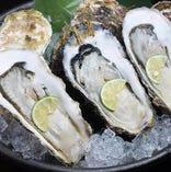 新名物の「牡蠣」は必見! 毎日仕入れる新鮮な牡蠣をご堪能ください。