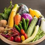 伝統の三浦野菜