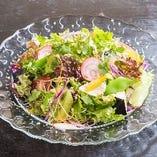 三浦野菜の中での旬ものや変わった種類をご提供