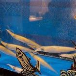 市場から直送された鮮魚は生け簀(いけす)に放します