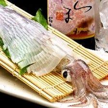 【活イカあり】新鮮魚介は毎日入荷!