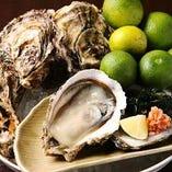 【年中楽しめる】 全国の産地より仕入れる新鮮な牡蠣は必食!