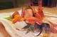 鮮魚お刺身はもちろん充実。仕入れは料理長が直接足を運びます。