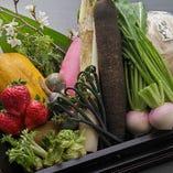 季節を感じる旬のお野菜や山菜、果物など【築地市場より】