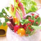 彩り野菜の農園バーニャカウダ