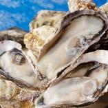 ぷりっぷりな播磨灘産の牡蠣。食べ放題や牡蠣小屋コースも人気…