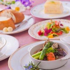牛肉の赤ワイン煮+お庭のハーブとサラダ+パンorライス