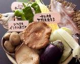 全国各地から届く旬野菜。 生でも焼きでも美味しいです!