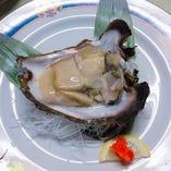 京都の天然の岩牡蠣【京都府】