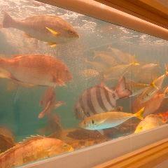 魚匠ダイニング 八潮