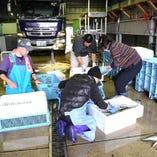 地元熊本の天草を中心とした活魚【熊本県】