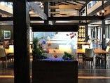 店内で優雅に泳ぐ金魚たち。のんびりとした時間をお過ごし下さい