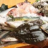 田崎市場直送と天草漁師便の新鮮な魚を厳選。刺身・炙り焼き・煮つけ・蒸しもの・・・最適な調理法でどうぞ