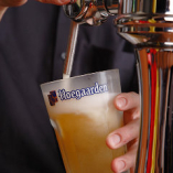 更にビールを楽しみたい人の為の特別プラン!
