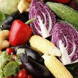 毎日変わる農家さんのサラダ