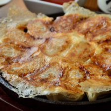 博多 鉄なべ餃子