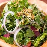 「スーパーデトックスグリーンサラダ」契約農家より届く新鮮な野菜を盛り合わせました。旬のお野菜を存分に味わえます。