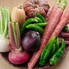 シャキシャキ新鮮野菜がたっっぷり!