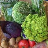 自然農園直送のお野菜【奈良県明日香村】