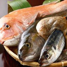 瀬戸内海・玄界灘等の漁師直送天然魚