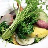 有機野菜のガーデンサラダ