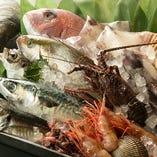 全国各地の旬な魚介類【神奈川県】