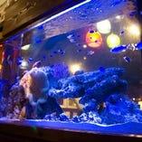 当店入口では、ニモなどの熱帯魚がお客様をお出迎え♪