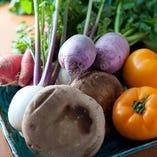 四季ごとにさまざまな野菜が入荷します。