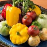 珍しい野菜もたくさん揃いますよ♪