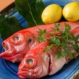 きんきやのどぐろなど、高級魚も揃います!