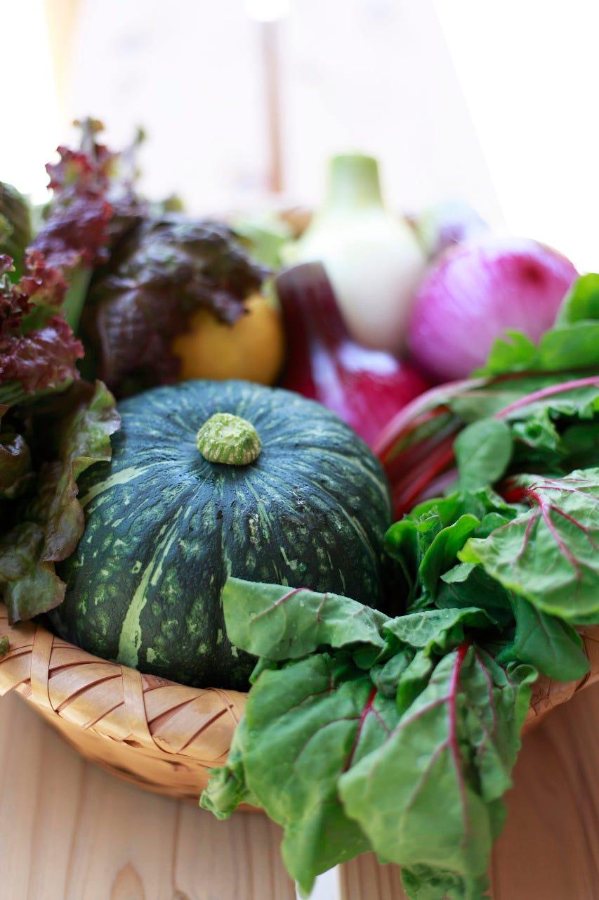 地元糸島を愛す野菜をご提供。