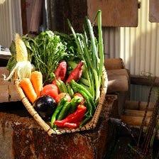 契約農家直送!滋味あふれる鎌倉野菜