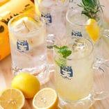 こだわりのレモンサワー達!7種類ご用意しております!